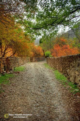 پاییز شیوند