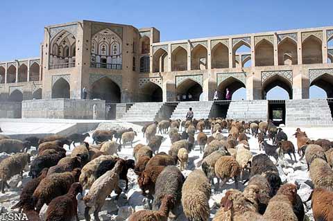 تصاویر: روزگار سخت زاینده رود اصفهان