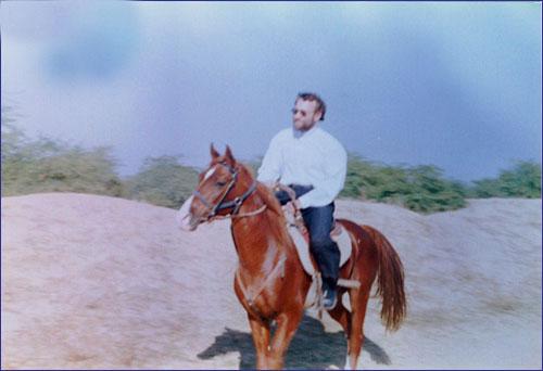 قیمت اسب لاریجانی