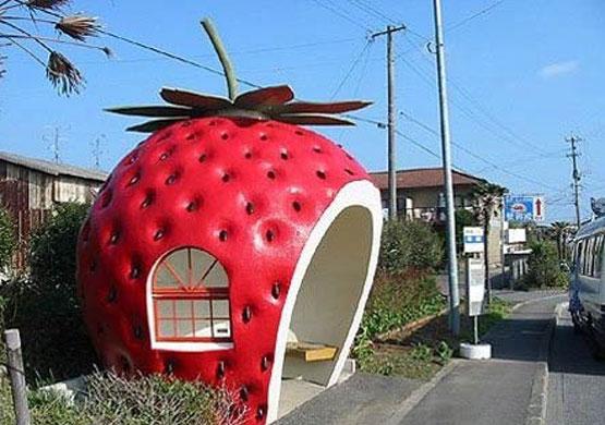 تصاویر جالب از ایستگاه های اتوبوس عجیب در کشورهای مختلف! www.TAFRIHI.com
