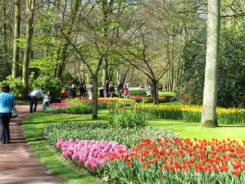 تصاویر زیبا از یک باغ گل در هلند www.TAFRIHI.com