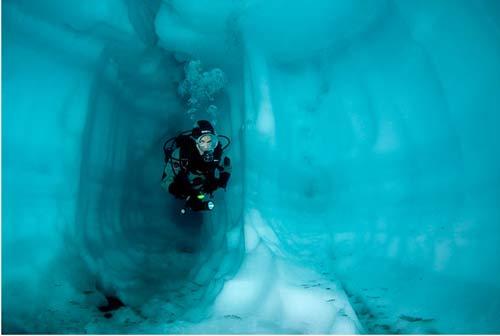 تصاویر شگفت انگیز از شنا زیر آب های دریاچه یخی