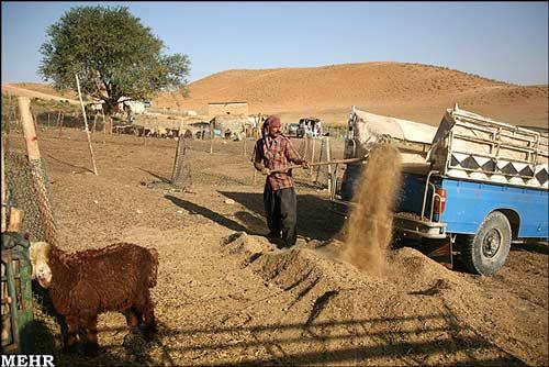 عکس, تصویر, گزارش تصویری از زندگی عشایری سده اقلید فارس