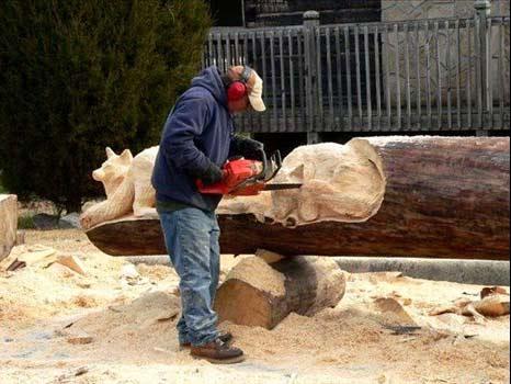عکس   تصاویر جالب ازخلاقیت یک هنرمند با تنههای درخت