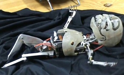 نوزاد روباتیک هم متولد شد