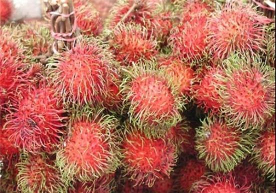 عجیبترین میوههای جهان