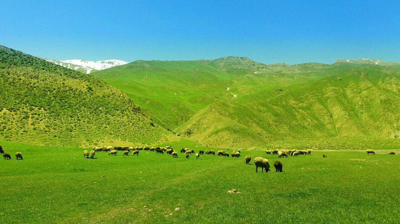 تلگرام اخبار استان قزوین دشت زیبای دریوک روستای نمار - تابناک   TABNAK