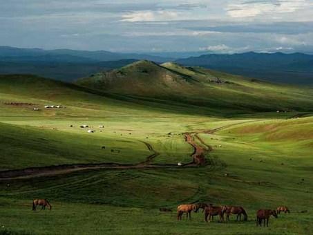 اقیانوس سبز در مغولستان Mark Leong