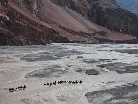 کاروان شترها، قرقیزستان Tommy Heinrich