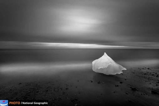 عکس:Eric Guth/ پذیرفته شده در بخش طبیعت
